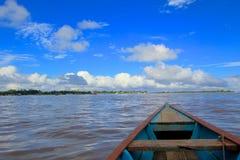 Amazon Jungle. Panoramic view taken in the Amazon Royalty Free Stock Photos