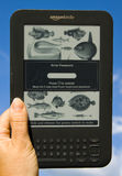 Amazon Kindle E-Reader. An Amazon Kindle ereader, in bright sunlight, with a sky background, clearly showing the anti glare ability of the e-ink technology as Royalty Free Stock Photos