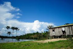 Amazon lake. Lake at Amazon Basin. Urucara city,  Amazon Estate, Brazil Royalty Free Stock Photo