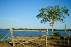 Amazon Landscape. Lake located at Urucara city, Amazonas Estate, Brazil Stock Photo