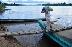 Amazon  - Peru Royalty Free Stock Photography