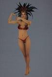 Amazon priestess Royalty Free Stock Images