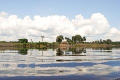 Amazon rainforest: Landscape along the shore of Amazon River near Manaus, Brazil South America Royalty Free Stock Photo