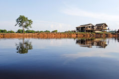Amazon rainforest: Settlement on the shore of Amazon River near Manaus, Brazil South America. Amazon rainforest: Settlement on the shore of Amazon River near Stock Photography
