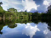 Free Amazon River Royalty Free Stock Photos - 14296478