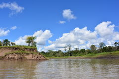Amazon river, in Amazon jungle, Peru. The Amazon river near to Iquitos, in the Amazon jungle of Peru stock photography
