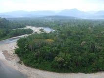 Amazon River. In Ecuador, South America Royalty Free Stock Photography