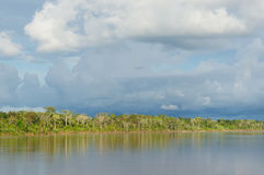 Amazon river landscape in Brazil Royalty Free Stock Image