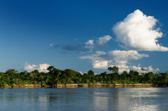 Amazon river landscape in Brazil Royalty Free Stock Photo