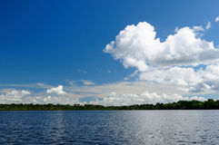 Amazon river landscape in Colombia Royalty Free Stock Image