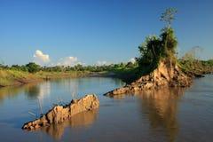 Amazon river Royalty Free Stock Photography