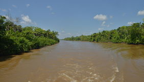 Amazon river during sunny day Stock Photography