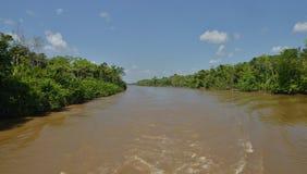 Amazon River under solig dag Arkivbild