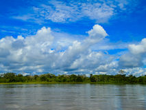 Amazon river Stock Photo