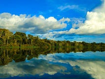 Amazon river Royalty Free Stock Photos