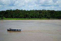 amazon rzeki obraz royalty free