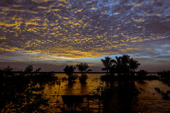 Amazon sunset in the Amanã Lake royalty free stock images