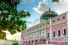 Amazon Theater in Manaus, Brazil Royalty Free Stock Photos