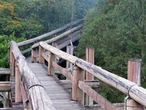Amazon Trail Ecotourism Forest Royalty Free Stock Image