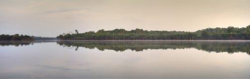Amazon tributary panoramic stock photo