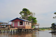 Amazon Typical Stilt House (The Amazonia). A typical construction of the amazon native people, the stilt house royalty free stock photography