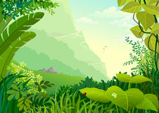 amazon zwarta dżungli drzew roślinność ilustracji