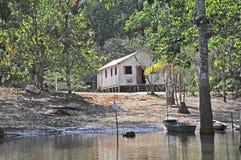 Amazonas-Dschungel-Behausung Stockfotos