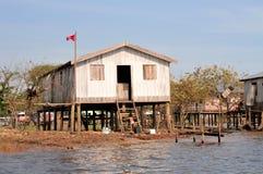 Amazonas-Dschungel-typisches Haus Stockbilder