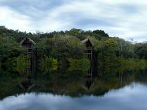 Amazonas-Fluss Lizenzfreies Stockfoto