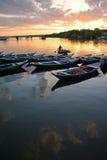 Amazonas-Gebiet Brasilien Stockfotografie