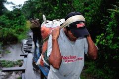 Amazonas - le Pérou Photos libres de droits