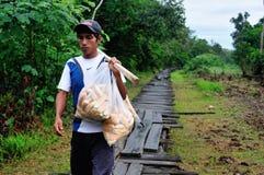 Amazonas - Peru Stock Image