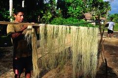 Amazonas - Peru Royalty Free Stock Image