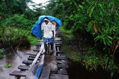 Amazonas - Peru Stock Photos