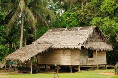 Amazonas peruano, pagamento indiano imagens de stock