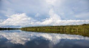 Amazone Image stock