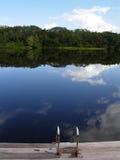 Amazone Photo stock