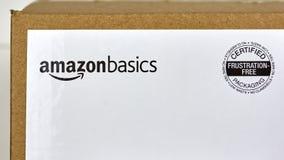 Amazonek podstaw wysyłki pudełko Obraz Stock