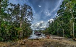 Amazonië Stock Foto's