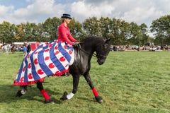 Amazonië die een zwart paard berijden tijdens een Nederlands landbouwfestival Stock Afbeelding