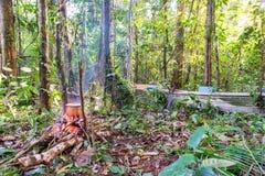 Amazonian Campsite Stock Photography