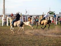 Amazonian cowboy Stock Photos