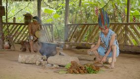 Amazonian Indigenous Chief Crushing And Cooking Ayahuasca. In Ecuador stock footage