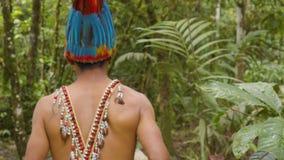 Amazonian Indigenous Man Going Walking Trough Amazonian Jungle Follow Shot. In Ecuador stock video