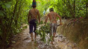 Indigenous People Carrying Ayahuasca Plants. Amazonian Indigenous People Carrying Ayahuasca Plants In Ecuador stock footage