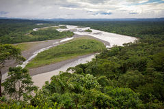 Amazonian lowlands, Eastern Ecuador. View of the Amazonian lowlands, Eastern Ecuador Royalty Free Stock Photography