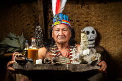 Amazonian Shaman Portrait. Shaman In Ecuadorian Amazonia During A Real Ayahuasca Ceremony Model Released Image As Seen In April 2015 Royalty Free Stock Image
