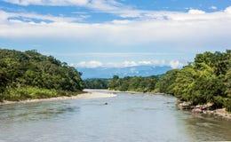 Amazonian tropikalnego lasu deszczowego Napo rzeka Ekwador zdjęcie stock