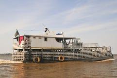 Amazonic Cattle Transportation (The Amazonia) Stock Photos