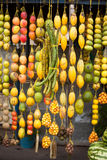 Amazonic traditionele vruchten Royalty-vrije Stock Foto's